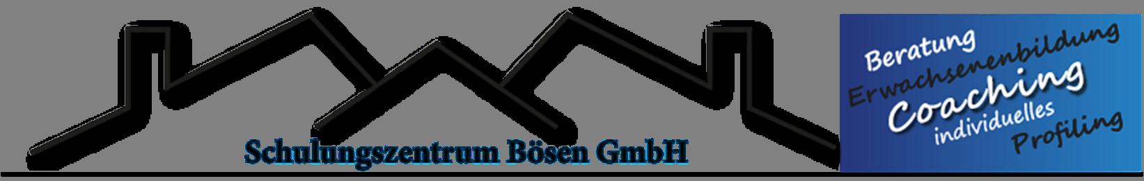 Boesen-Logo.png#asset:417