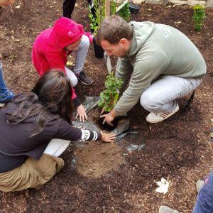 Ein Schulgarten für die Anne-Frank-Schule