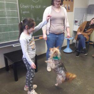 Besuch von Schulhund Shiva in Klasse 3/4